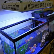 165W LED Aquarium Lamp Light For Fish Tank